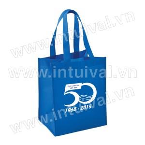 Túi vải có hông - TVCH18