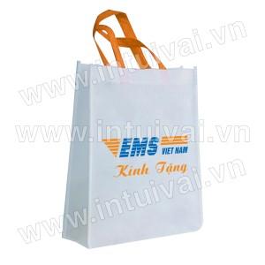 Túi vải có hông - TVCH59