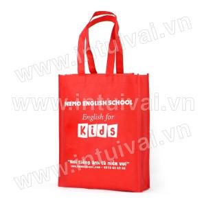 Túi vải có hông - TVCH29
